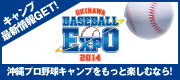 沖縄ベースボールEXPO2014